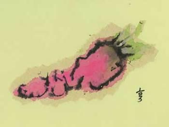 2006/10 赤大根